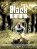 Black Diamond, l'or des fous (Black Diamond)