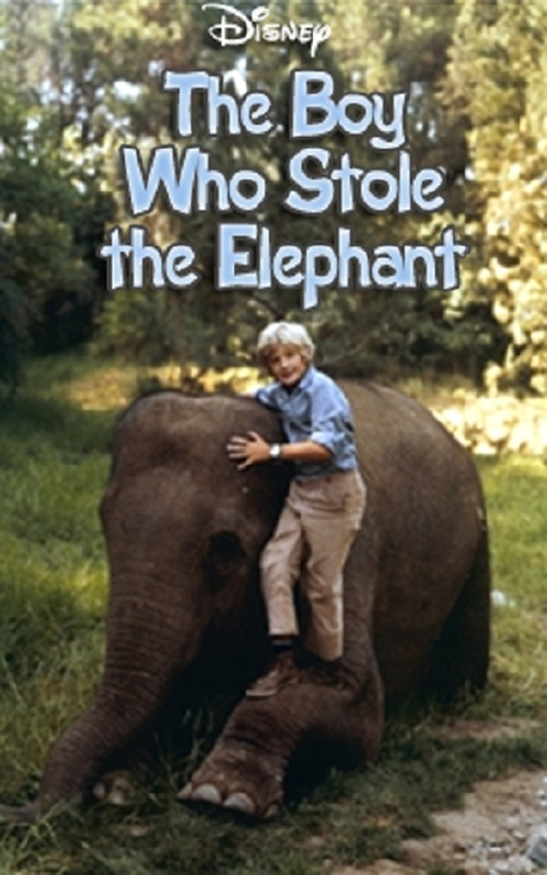 affiche du film The Boy Who Stole the Elephant (TV)