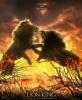 Le Roi Lion (2019) (The Lion King)