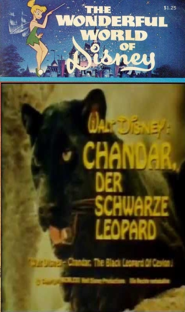 affiche du film Chandar, the Black Leopard of Ceylon (TV)