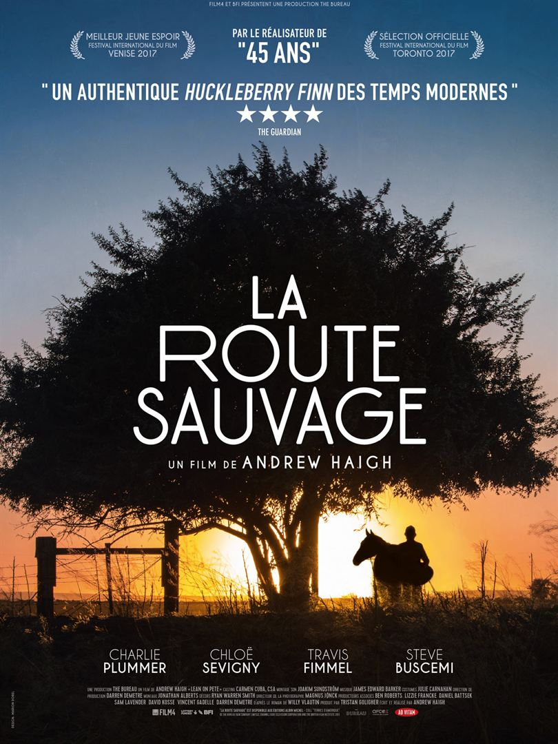 affiche du film La Route Sauvage
