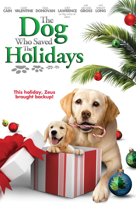 affiche du film Gabe, un amour de chien (TV)