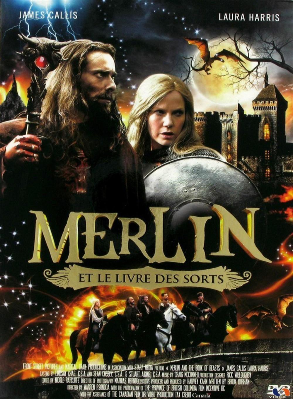 affiche du film Merlin et le livre des créatures (TV)