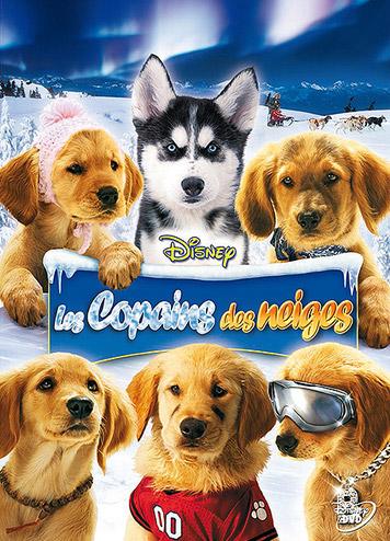 affiche du film Les copains des neiges