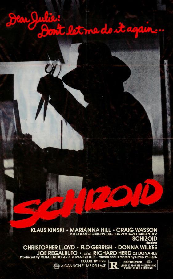 affiche du film Schizoïde