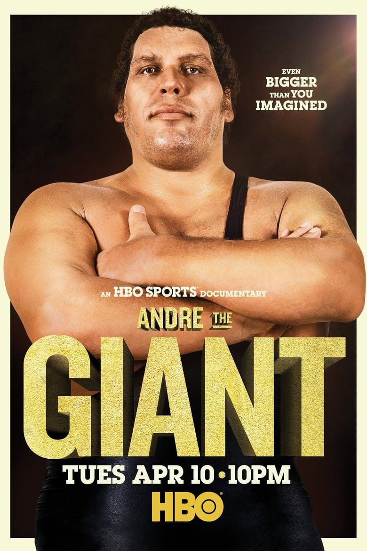 affiche du film Andre the Giant (TV)