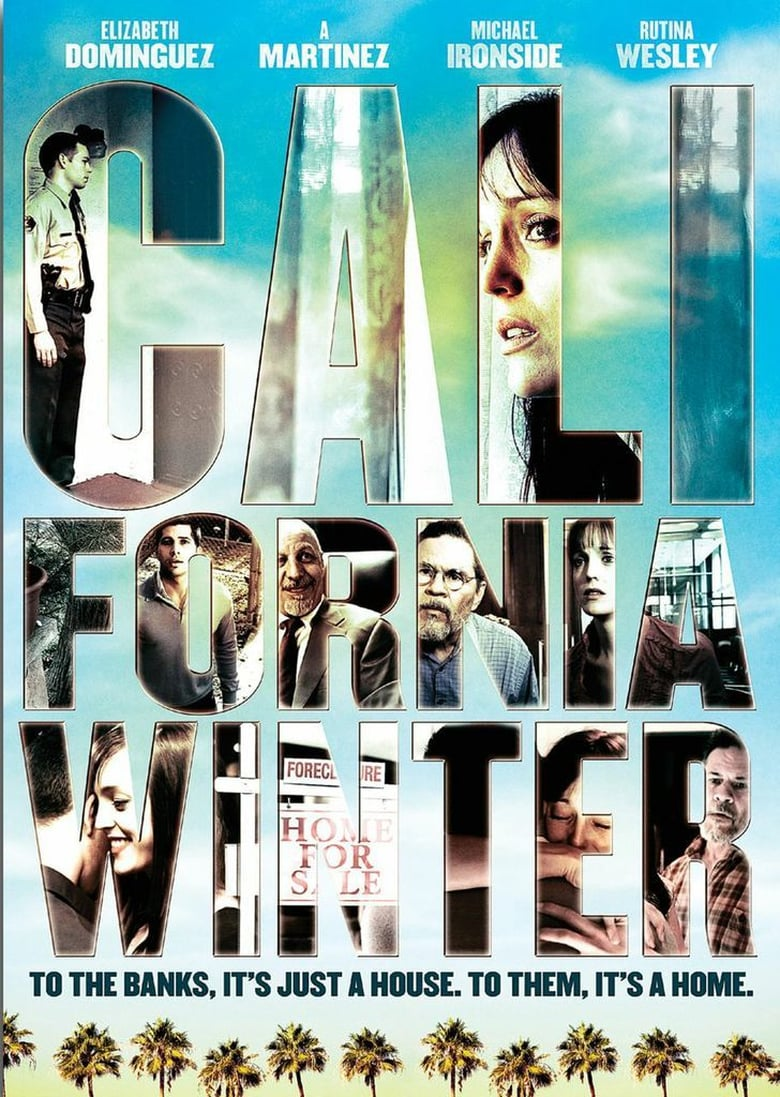 affiche du film California Winter