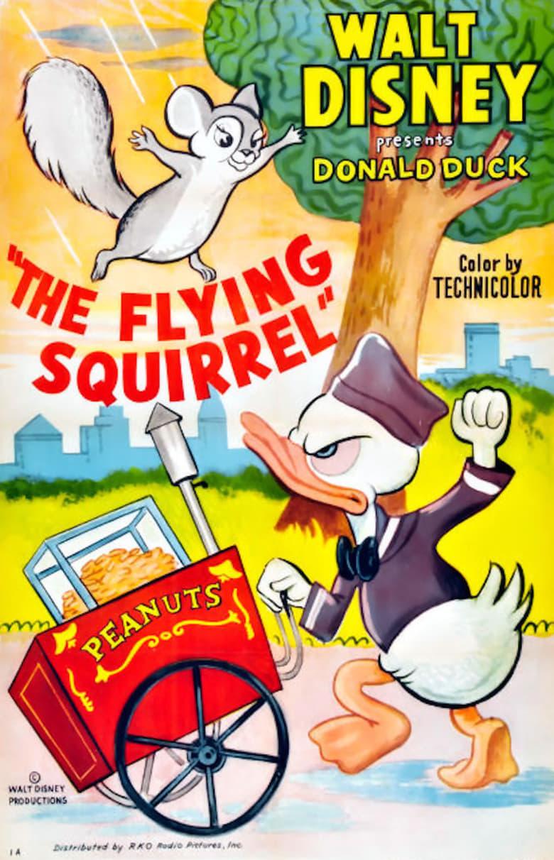 affiche du film Donald et l'écureuil volant