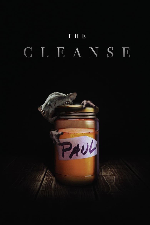 affiche du film The Cleanse