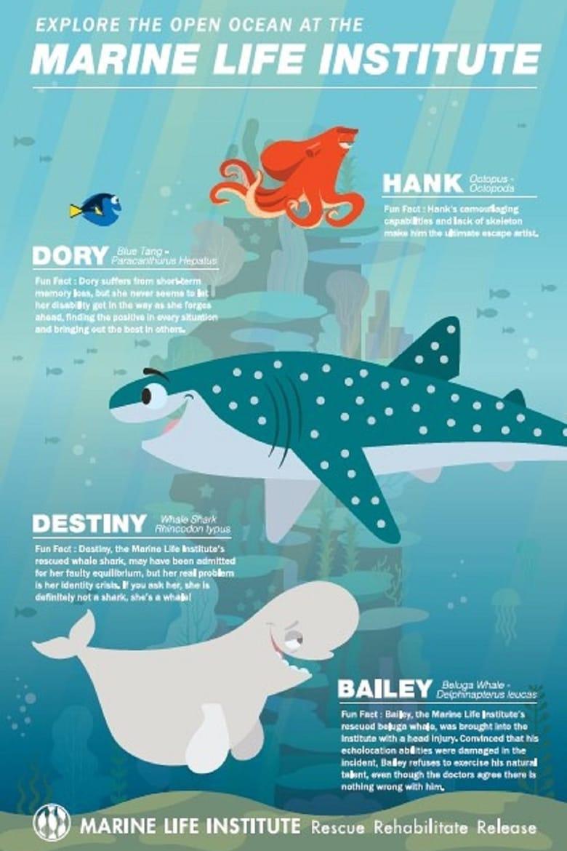affiche du film Interviews à l'Institut de Biologie Marine
