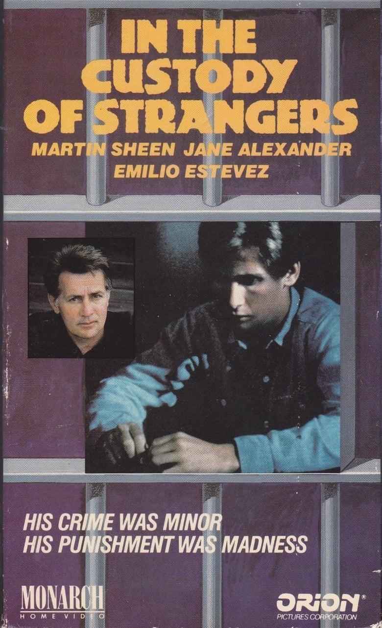 affiche du film In the Custody of Strangers (TV)