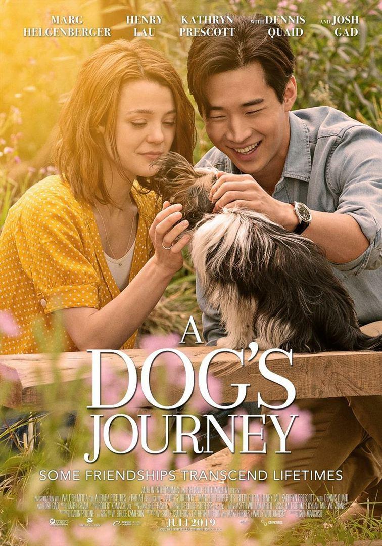 affiche du film Mes autres vies de chiens