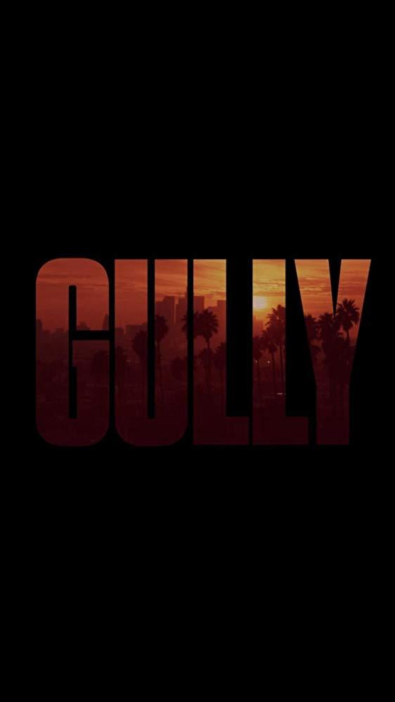 affiche du film Gully
