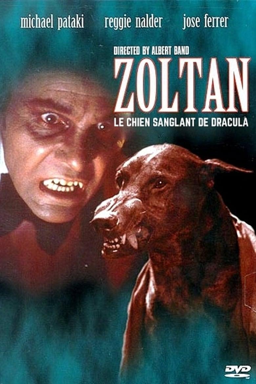 affiche du film Zoltan, le chien sanglant de Dracula
