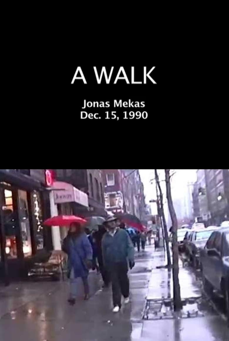 affiche du film A Walk