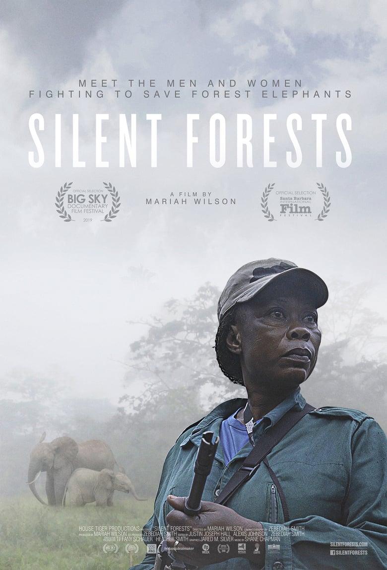 affiche du film Silent Forests