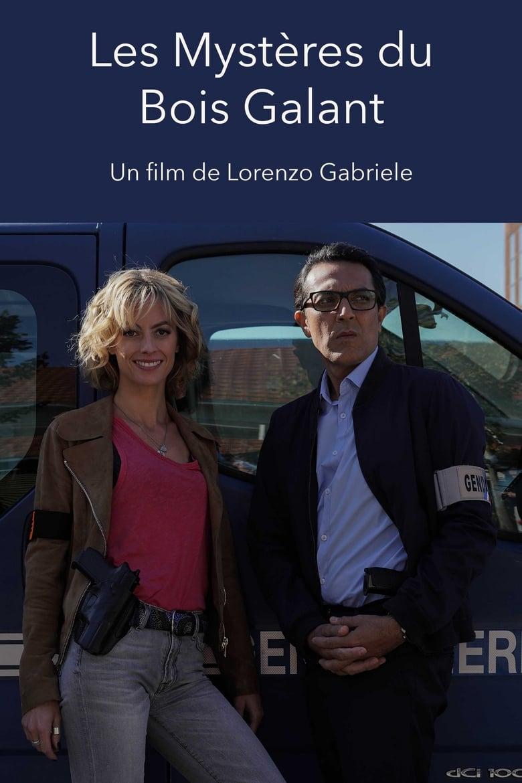 affiche du film Meurtres à Rochefort : Les Mystères du Bois Galant (TV)
