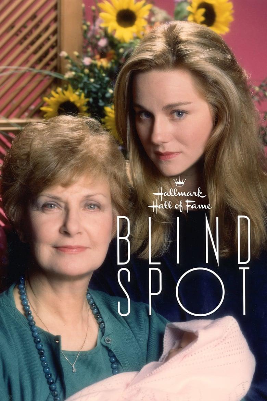 affiche du film Blind Spot (TV)