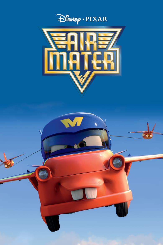 affiche du film Air Martin