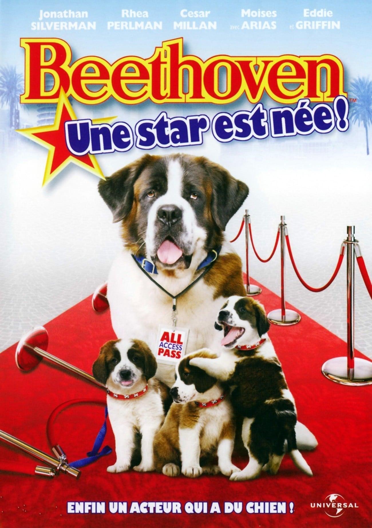 affiche du film Beethoven : Une star est née !