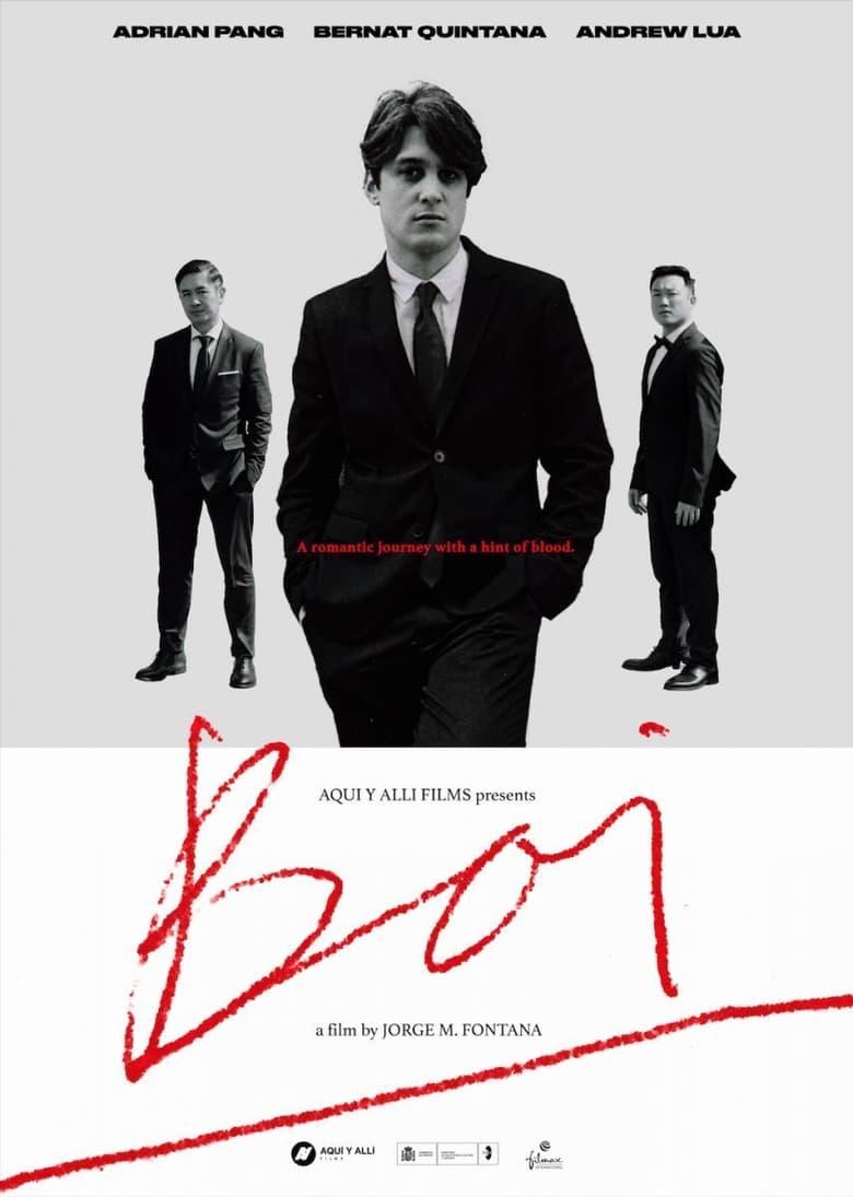 affiche du film Boi