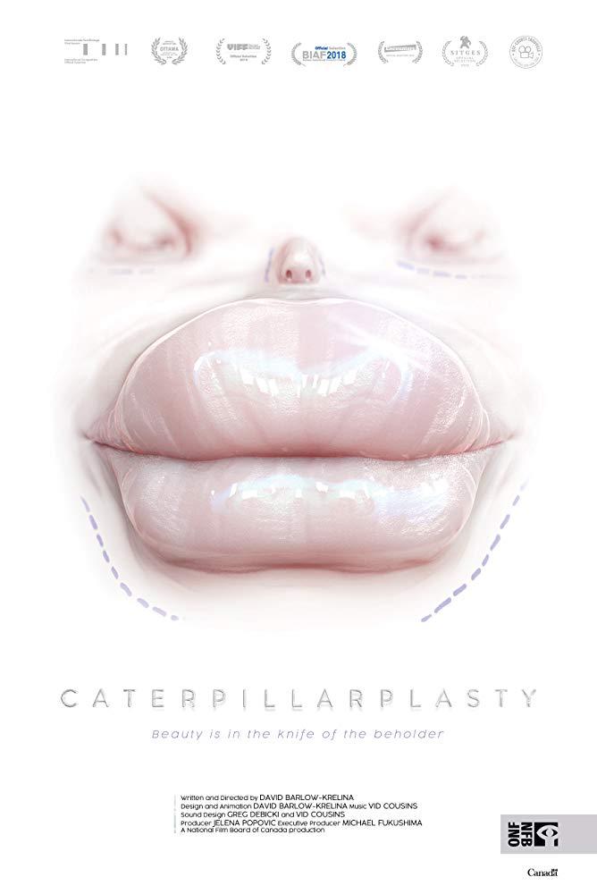 affiche du film Papillioplastie