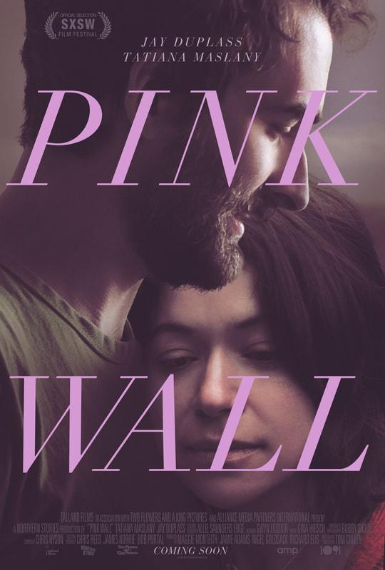 affiche du film Pink Wall