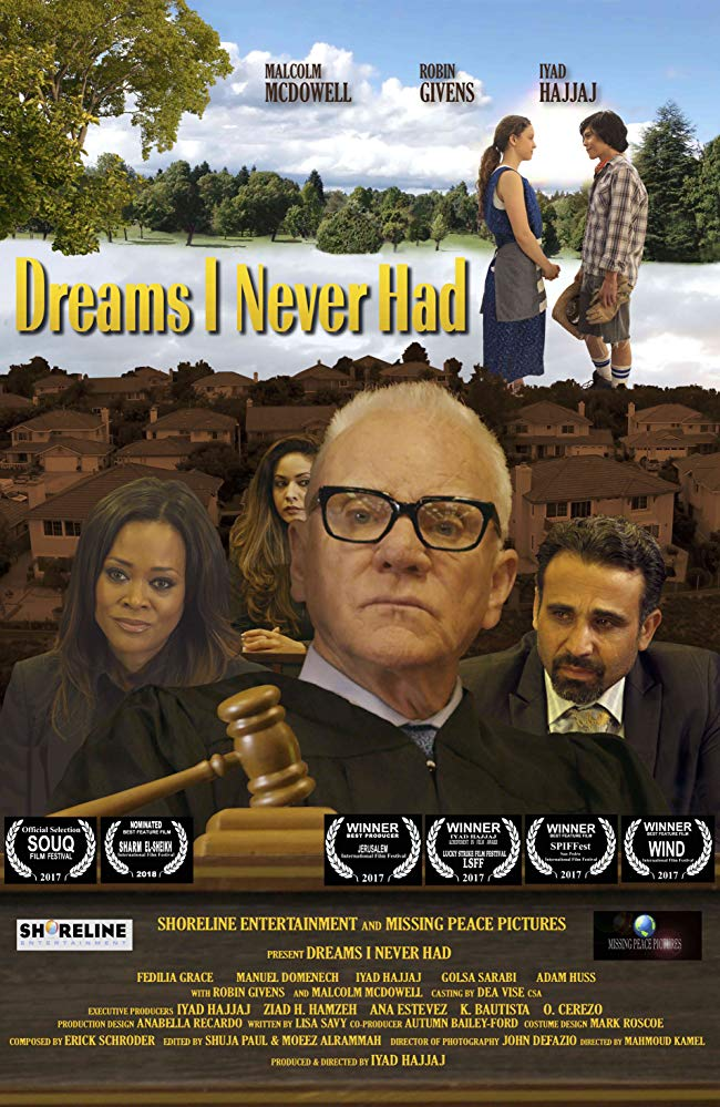 affiche du film Dreams I Never Had