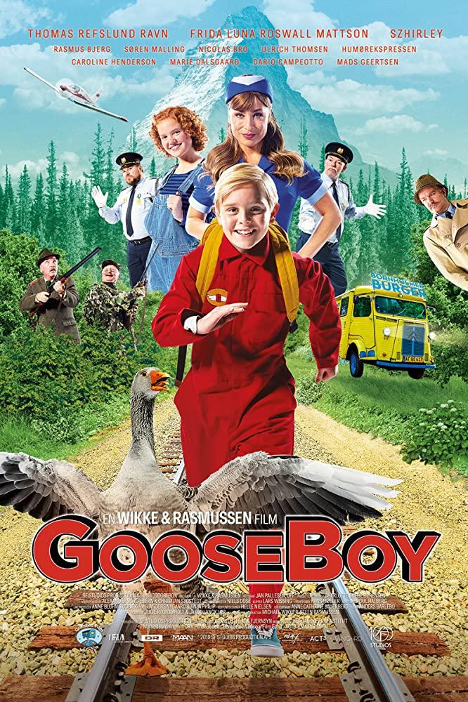 affiche du film Gooseboy