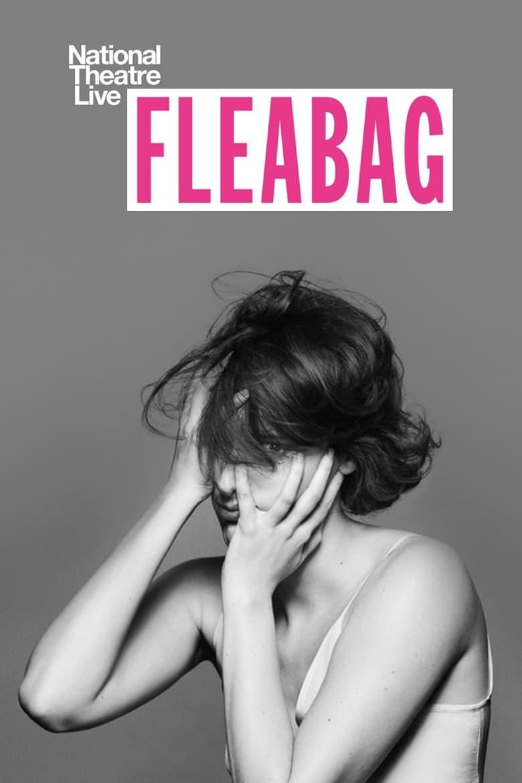 affiche du film National Theatre Live: Fleabag