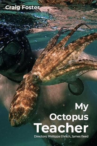 affiche du film La Sagesse de la pieuvre