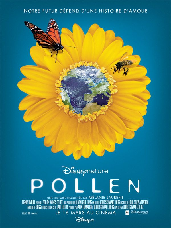affiche du film Pollen