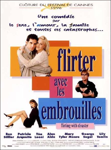 affiche du film Flirter avec les embrouilles