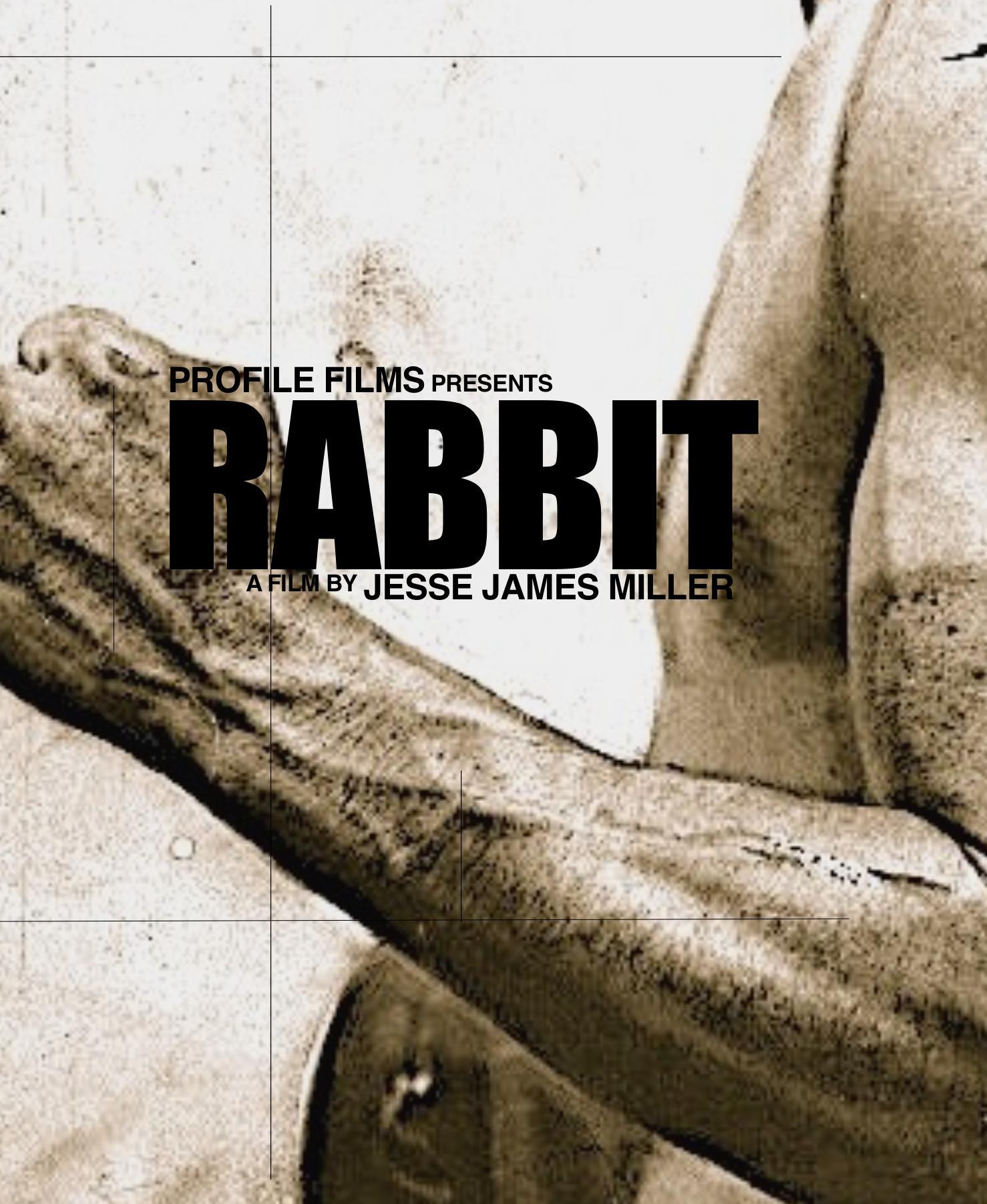 affiche du film Rabbit