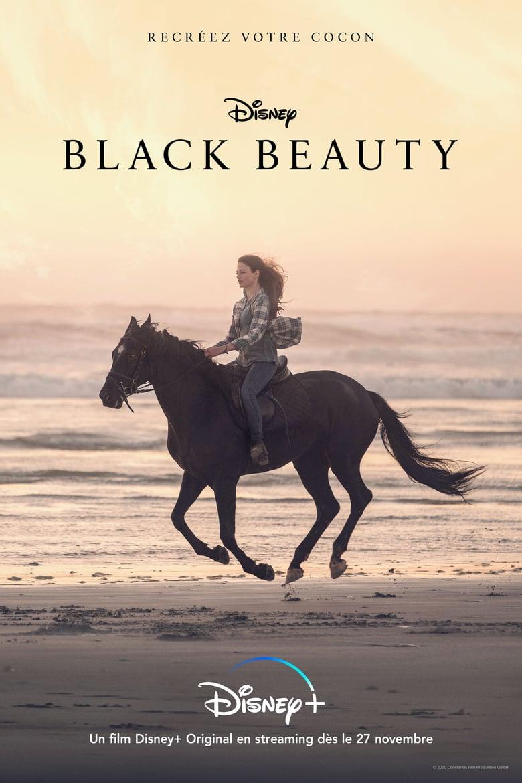 affiche du film Black Beauty
