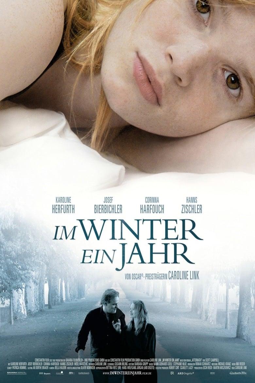affiche du film Un an en hiver