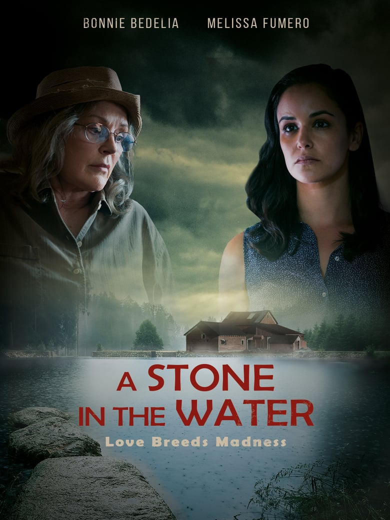 affiche du film A Stone in the Water