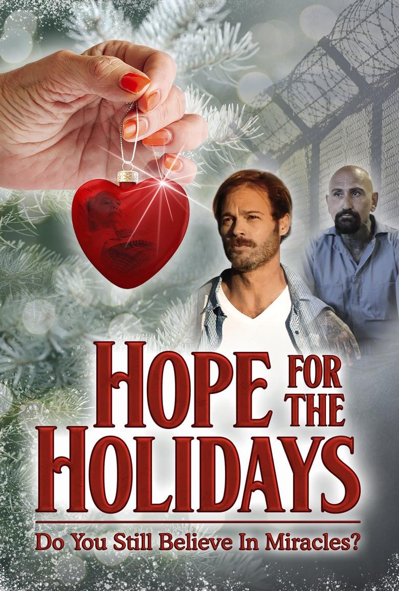 affiche du film Hope For The Holidays