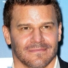 portrait David Boreanaz