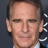 portrait Scott Bakula