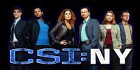 Les Experts : Manhattan (CSI: NY)