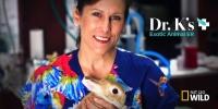 La Clinique des animaux exotiques (Dr. K's Exotic Animal ER)