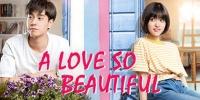 A Love So Beautiful (CN) (Zhi Wo Men Dan Chun De Xiao Mei Hao)