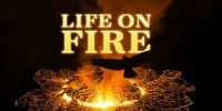 Le Peuple des Volcans (Life on Fire: Wildlife on the Volcano's Edge)