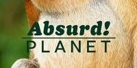 Drôle de planète (Absurd Planet)