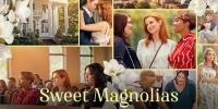 À l'ombre des magnolias (Sweet Magnolias)