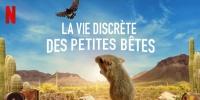 La Vie discrète des petites bêtes (Tiny Creatures)