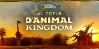 Au Cœur d'Animal Kingdom (Magic of Disney's Animal Kingdom)