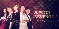 A Wife's Revenge (Hui Jia De You Huo)