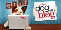 #doggyblog (Dog with a Blog)